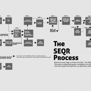 the-seqr-process
